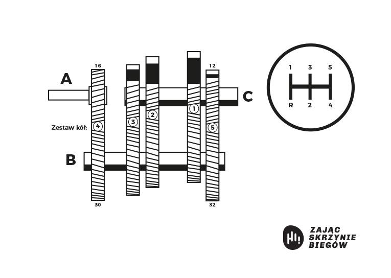 manualna skrzynia biegów - jak działa - schemat - skrzynie biegów zając